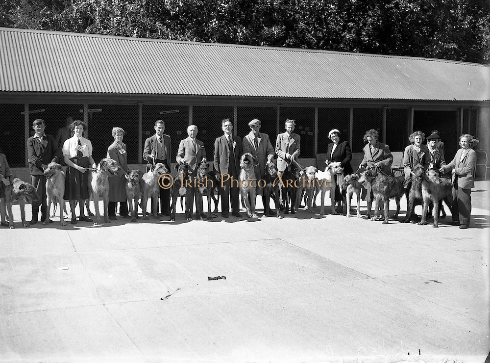19/07/1952<br /> 07/19/1952<br /> 19 July 1952<br /> Dog show: All Breed Championship, 10th Annual Show of the Combined Canine Clubs at Terenure College,<br /> Templeogue Road Terenure Dublin. Dog owners with their wolfhounds.