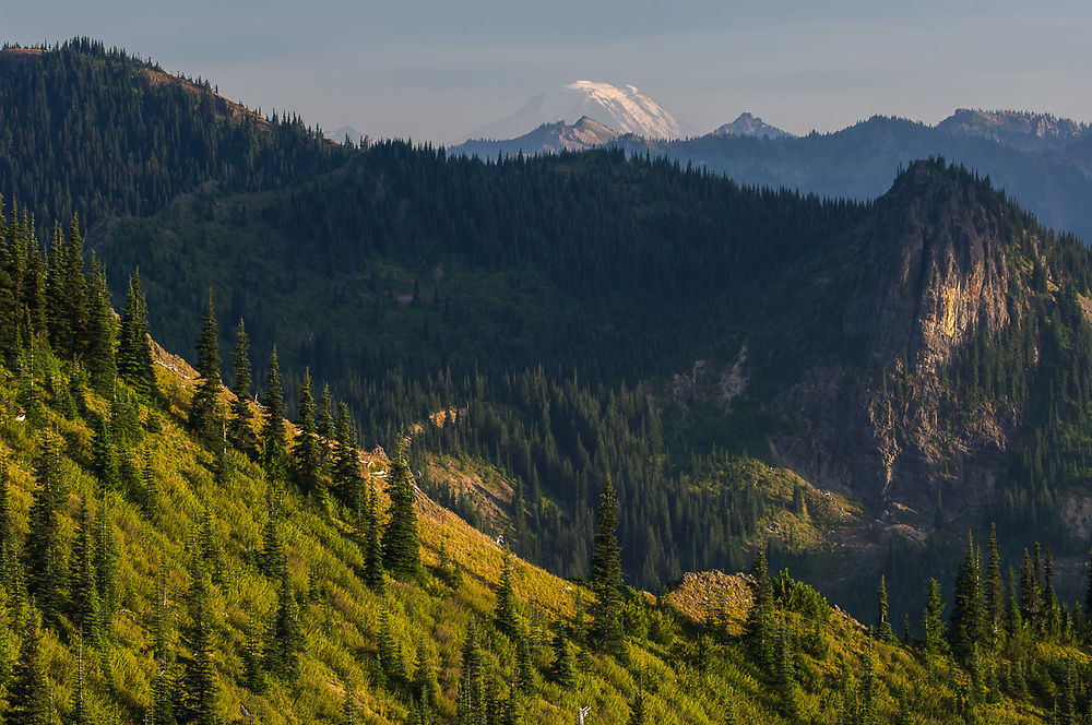 Mount Adams in the distance, afternoon light, August, view from the Norse Peak Wilderness, Mount Baker-Snoqualmie National Forest, Washington, USA