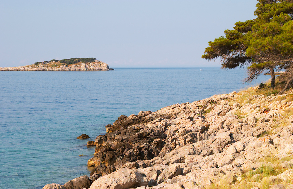 View over coast cliffs with pine trees over the sea water towards an island. Prizba village. Korcula Island. Prizba, Riva Apartments, Danny Franulovic. Korcula Island. Dalmatian Coast, Croatia, Europe.