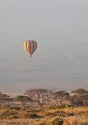 Hot air balloon floating above Acacia trees with Mount Kilimanjaro backdrop. Amboseli National Park, Kenya