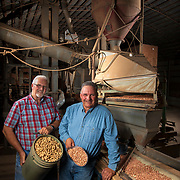 Loyd Lasley, center, and his brother David hold shelled and raw peanuts next to the machine they use to separate them on the family farm in Eakly, Oklahoma. The Lasleys shell and roast the peanuts they grows on his 900 acre farm, which has been in his family for several generations. Nathan Lambrecht/Journal Communications