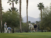people playing a round of golf