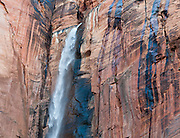 West Rim Spring plunges in a seasonal waterfall over desert varnish on a Navajo sandstone cliff seen from the Temple of Sinawava shuttle bus stop in Zion National Park, Springdale, Utah, USA.