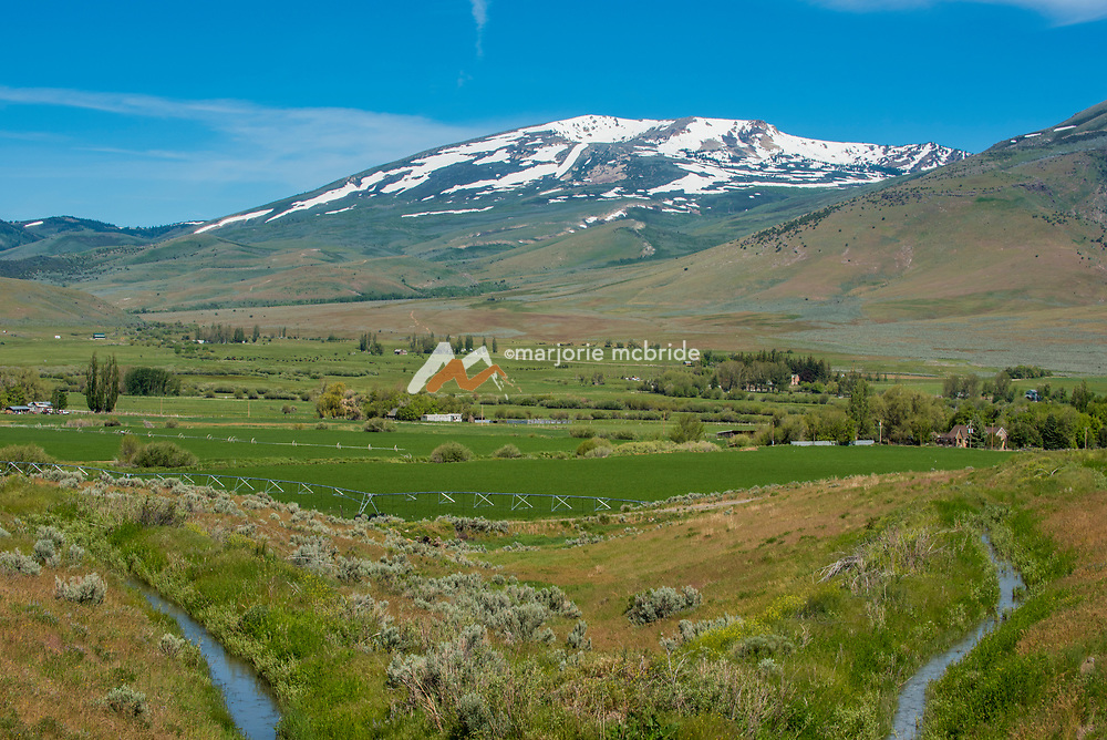 Scenic agriculture and farm view from Elba-Almo Highway with Mout Harrison beyond still with snow during spring near Albion, Idaho.