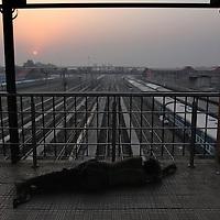 Train station at sunset. Haridwar, India.<br /> Photo by Shmuel Thaler <br /> shmuel_thaler@yahoo.com www.shmuelthaler.com