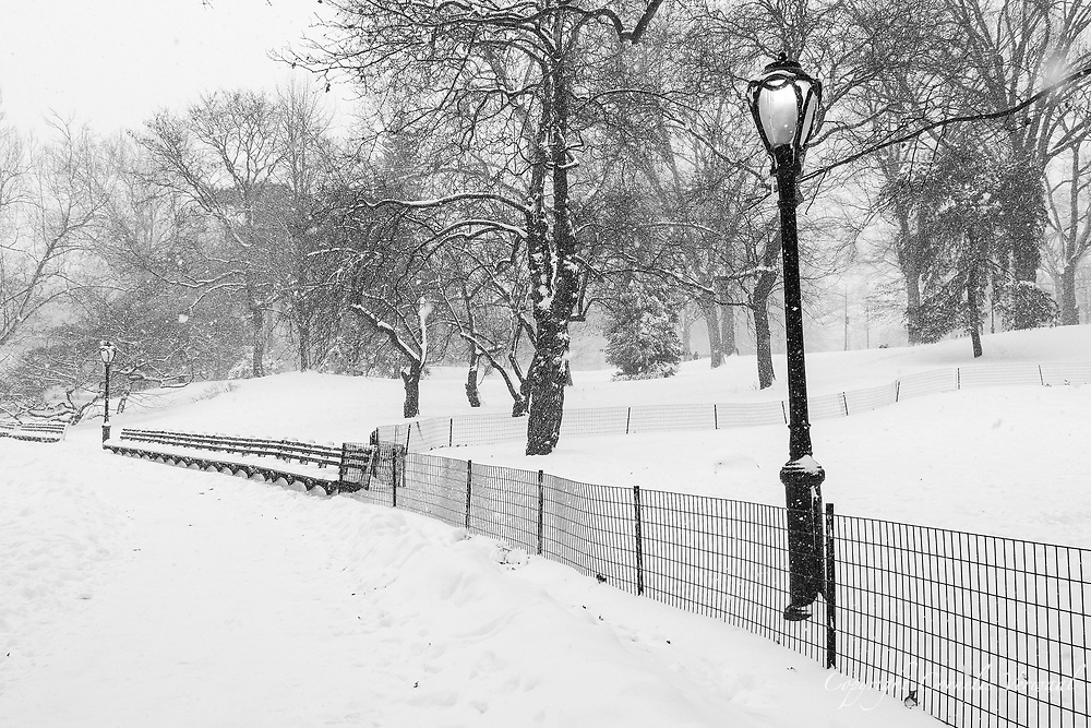 Winter landscape near the Sailboat Pond in Central Park