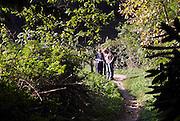 Nederland, Ubbergen, 22-10-2013Wandelaars kijken op een wandelkaart hoe hun wandelroute loopt over de helling van de stuwwal.Foto: Flip Franssen/Hollandse Hoogte