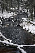 Narrow and rapid River Līgatne in snow covered forests on winter day, near Nītaure, Vidzeme, Latvia Ⓒ Davis Ulands   davisulands.com