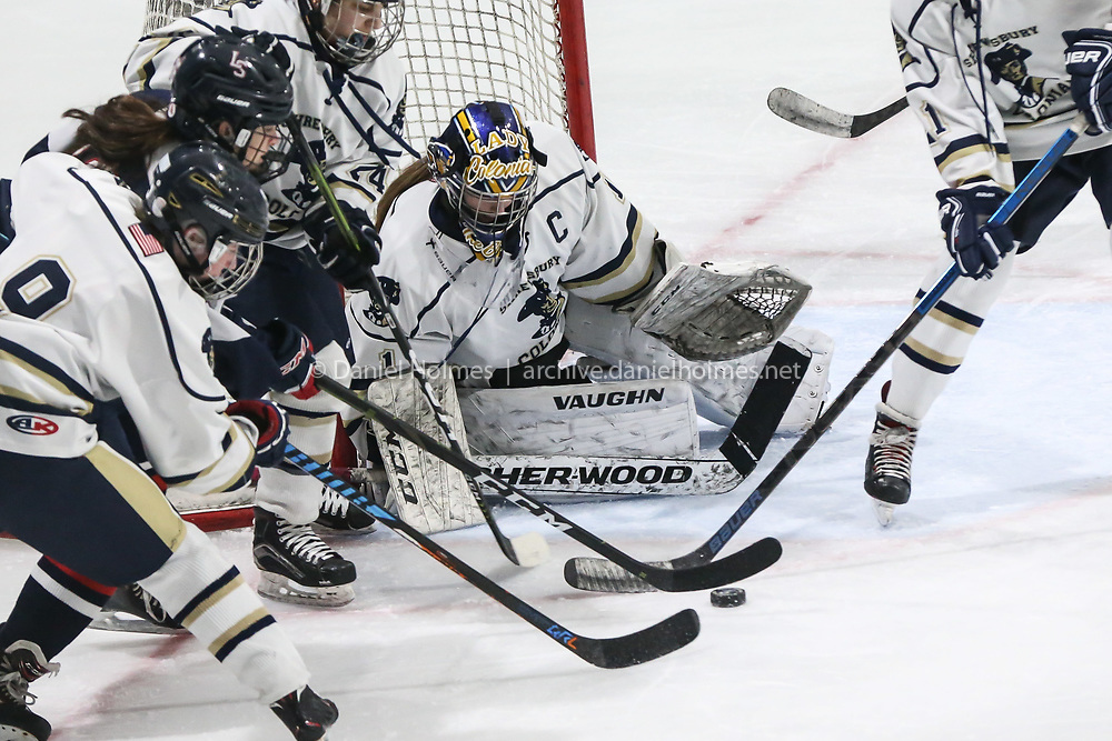 (2/26/20, WESTBOROUGH, MA) Shrewsbury goalie Riley MacCausland guards the goal DOESTHIS during the preliminary round of the Division 1 playoffs against Lincoln-Sudbury at Northstar Ice Sports in Westborough on Wednesday. [Daily News and Wicked Local Photo/Dan Holmes]