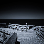 """""""Light on the Horizon"""" <br /> <br /> A beautiful and atmospheric black and white scene at overlook #9 along Lake Michigan on Pierce Stocking Scenic Drive!"""