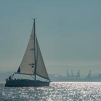 A sailboat cruises on San Francisco Bay, California.