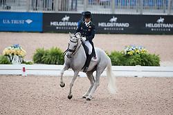 Veiga Manuel, POR, Ben Hur Da Broa<br /> World Equestrian Games - Tryon 2018<br /> © Hippo Foto - Dirk Caremans<br /> 12/09/18