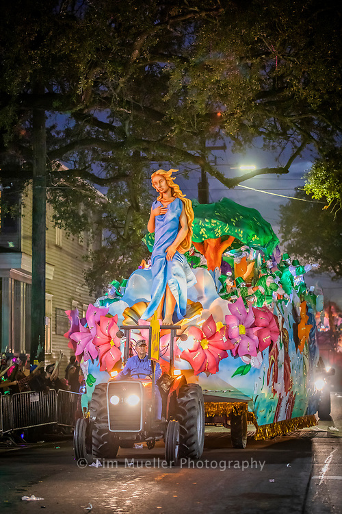 The Krewe of Hermes float, Birth of Venus, rolls down Magazine before making the turn at Napoleon Avenue in updown New Orleans.