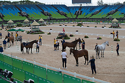 Team Sweden<br /> Horse Inspection Jumping<br /> Olympic Games Rio 2016<br /> © Hippo Foto - Dirk Caremans<br /> 12/08/16