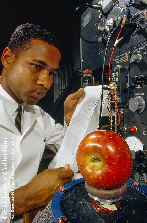 A technician tests a machine that will test an apple's ripeness.