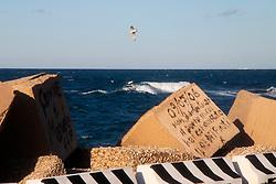 08/03/2009 Brindisi zona Sciaia due gabbiani sorvolano il mare