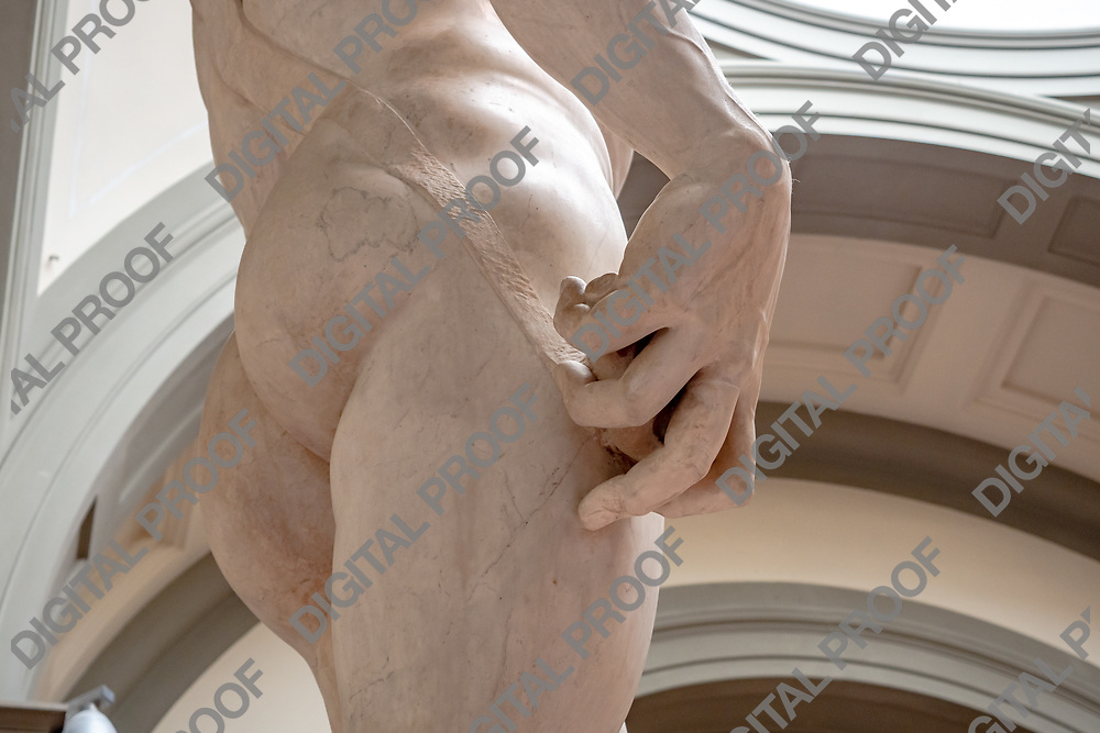 Hand details from the Statue of David (David by Michelangelo) in the Galleria della accademia, horizontal crop. Florence, Italy May 12, 2019.