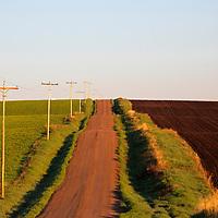 USA, Idaho, Driggs. Rural farm road and poles in southeastern Idaho.