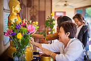 """11 MARCH 2012 - CHANDLER, AZ:  Women rub gold leaf on a Buddha statue before Makha Bucha services at Wat Pa in Chandler, AZ, Sunday. Magha Puja (also spelled Makha Bucha) Day marks the day 2,500 years ago that 1,250 Sangha came spontaneously to see the Buddha who preached to them on the full moon. All of them were """"Arhantas"""" or Enlightened Ones who had been personally ordained by the Buddha. The Buddha gave them the principles of Buddhism, called """"The Ovadhapatimokha."""" Those principles are: to cease from all evil, to do what is good, and to cleanse one's mind. It is one of the most important holy days in the Theravada Buddhist tradition. At the temple, people participate in the """"Tum Boon"""" (making merit by listening to the monk's preaching and giving a donation to the temple), the """"Rub Sil"""" (keeping of the Five Precepts including the abstinence from alcohol and other immoral acts) and the """"Tuk Bard"""" (offering food to the monks in their alms bowls). It is a day for veneration of the Buddha and his teachings. It's a legal holiday in Thailand, Laos, Cambodia and Myanmar (Burma).        PHOTO BY JACK KURTZ"""
