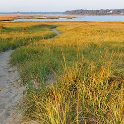 A sandy path through dune grass at Coast Guard Beach in the Cape Cod National Seashore. Eastham, Massachusetts.