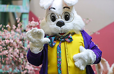 03/30/19 Easter Bunny @ Meadowbrook Mall