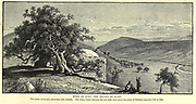 Wady es Sunt, The Valley of Elah The scene of David's encounter with Goliath Wood engraving of from 'Picturesque Palestine, Sinai and Egypt' by Wilson, Charles William, Sir, 1836-1905; Lane-Poole, Stanley, 1854-1931 Volume 3. Published in by J. S. Virtue and Co 1883