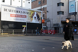 A new billboard advertisement produced by PETA UK, a UK-based charity dedicated to establishing and protecting the rights of all animals, is pictured on 17 November 2020 in London, United Kingdom. The advertisement, which features an image of Max the Shelter Dog, is intended to highlight the issue of celebrities and influencers purchasing 'pedigree' and 'designer' puppies from breeders at a time when thousands of dogs are waiting to be adopted at local shelters and rescue groups, including many acquired during the first coronavirus lockdown and then abandoned.