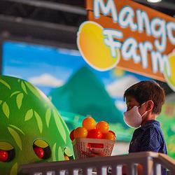 Alpine Securities USVI Mango Farm Unveiling at The Children's Museum