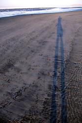 Long Shadow Of David On Beach