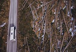THEMENBILD - Geknickte und entwurzelte Bäume, eine Schneise der Verwüstung hinterliess der Sturm Vaia in Norditalien, aufgenommen am 12. Jaenner 2019 in Varena , Italien // Kinked and uprooted trees, a trail of devastation left the storm Vaia in northern Italy vat the Passo di Lavaze, Varena , Italy on 2019/01/12. EXPA Pictures © 2019, PhotoCredit: EXPA/ JFK