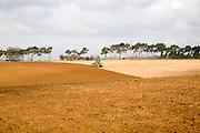 John Deere green tractor ploughing field, Shottisham, Suffolk, England