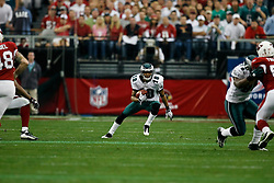 18 Jan 2009: Philadelphia Eagles wide receiver DeSean Jackson #10 returns a punt during the NFC Championship game against the Arizona Cardinals on January 18th, 2009. The Cardinals won 32-25 at University of Phoenix Stadium in Glendale, Arizona. (Photo by Brian Garfinkel)
