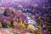 River Tarn valley autumn landscape Cevennes national park, Mont Lozere, France