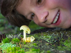 Girl looking at mushroom in black forest, Feldberg, Baden-Württemberg, Germany