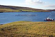 Fish farming cages, Aith Voe, Shetland Islands, Scotland