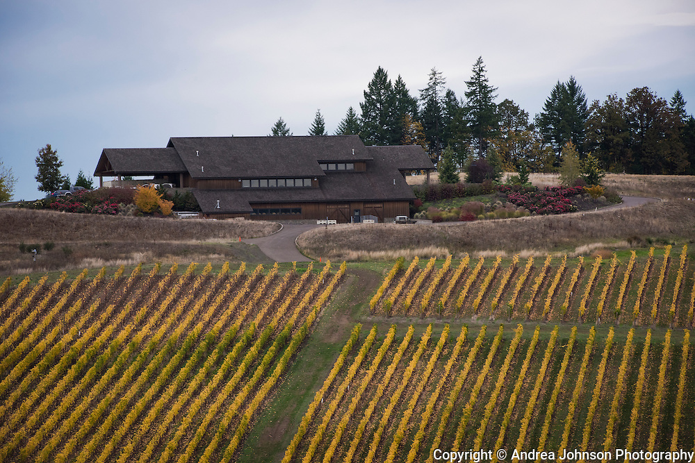 Aerial view over Colene Clemens winery and vineyard, Willamette Valley, Oregon