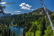 Twin Lakes with Mount Aeneas in the Jewel Basin Hiking Area of Flathead National Forest, Montana, USA