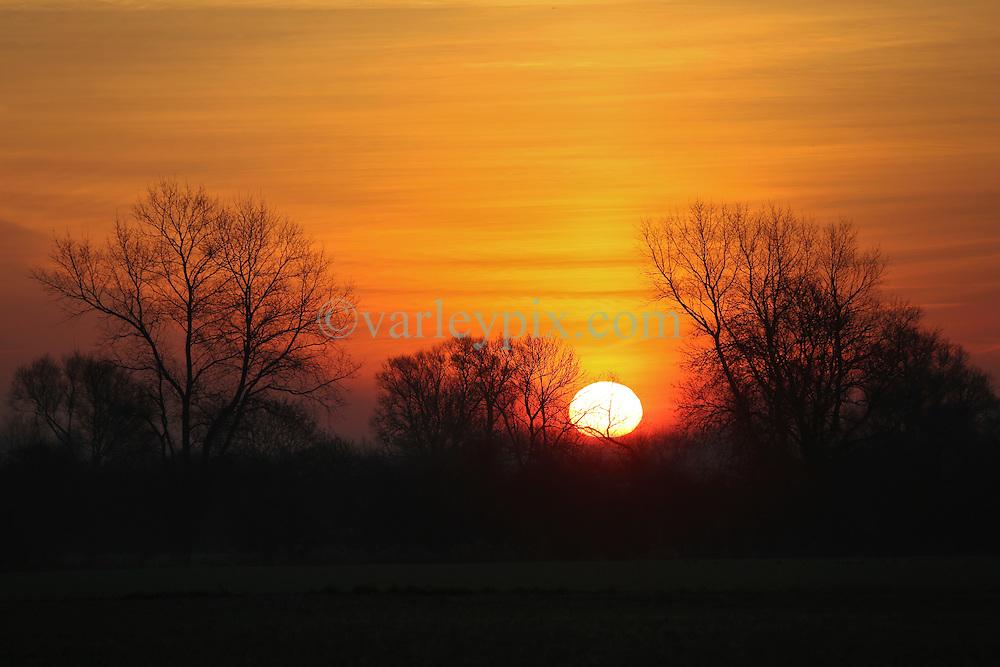 01 December 2016. Favières, France.<br /> Here comes the sun. Sunrise beyond a stand of trees.<br /> Photo; Charlie Varley/varleypix.com