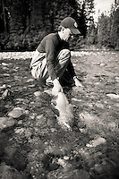 Angler George Rogers releasing a fly caught alaskan king salmon, east fork chulitna river, interior Alaska