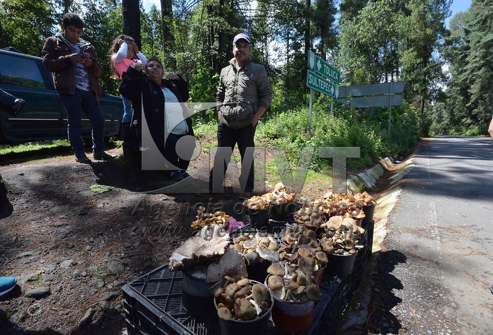 Temascaltepec, México.- (Agosto 20, 2018).- Pobladores de Temascaltepec salen a muy temprana hora al campo para poder cortar una gran variedad de hongos que posteriormente venden a orillas de la carretera Toluca-Sultepec. Agencia MVT / Crisanta Espinosa.