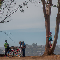 A family relaxes with their bicycles under Eucalyptus trees at Angel Island State Park in San Francisco Bay, California.