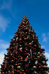 California: San Francisco Christmas celebration, Pier 39. Christmas tree and ornanents. Photo copyright Lee Foster.  Photo # 32-casanf76012