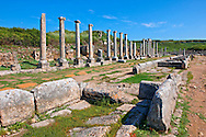 Ruins of the Roman Columned street which was lined with shops & stores. the troughs in the foreground were filled formed a canal with running  water from the Fountain of the Acropolis that ran down the middle of the street. Perge (Perga) archaeological site, Turkey .<br /> <br /> If you prefer to buy from our ALAMY PHOTO LIBRARY  Collection visit : https://www.alamy.com/portfolio/paul-williams-funkystock/perge-archaeological-site-turkey.html<br /> <br /> Visit our CLASSICAL WORLD HISTORIC SITES PHOTO COLLECTIONS for more photos to download or buy as wall art prints https://funkystock.photoshelter.com/gallery-collection/Classical-Era-Historic-Sites-Archaeological-Sites-Pictures-Images/C0000g4bSGiDL9rw