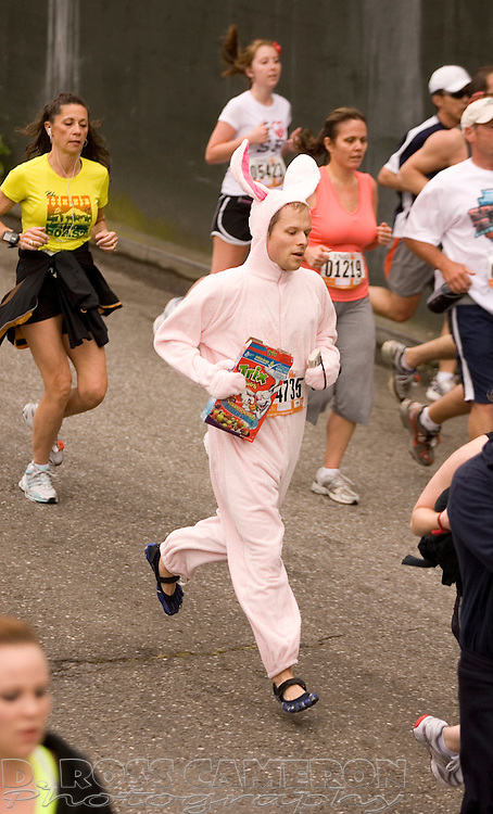 An unidentified man in a rabbit outfit, center, descends the crest of the Hayes Street hill at the 99th running of the Bay to Breakers 12K race, Sunday, May 16, 2010 in San Francisco. (Photo by D. Ross Cameron)