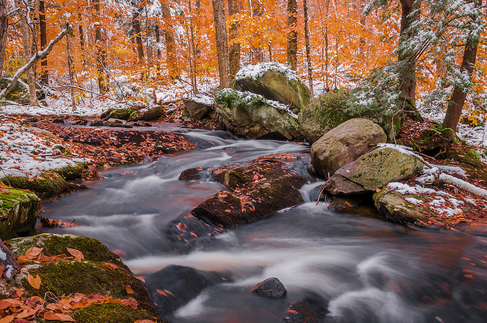 Dusting of snow in fall forest with river flowing over leaf covered rockbed, Hawley, MA