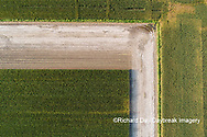 63801-10719 Corn field after it's been cut for silage-aerial Marion Co. IL