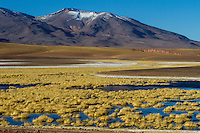 Salt lake in the foreground and volcano in the background, Atacama, Chile