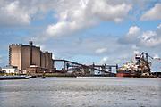 Nederland, Rotterdam, 22-10-2019  Schepen in de haven.Foto: Flip Franssen