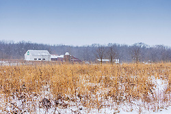 Sugar Grove Nature Center during a snow storm on February 13th, 2021