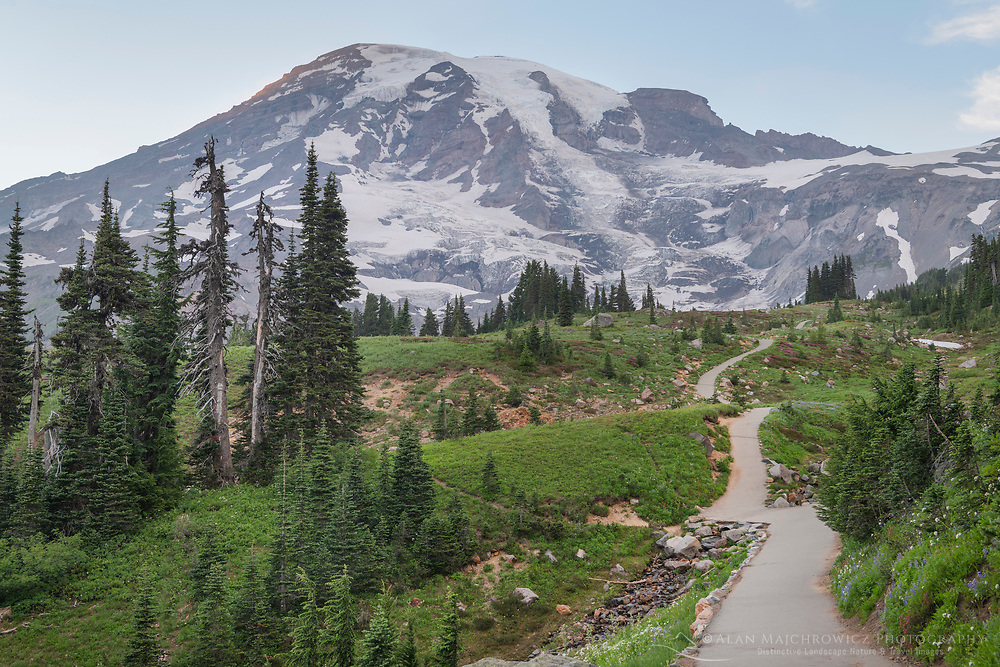 Paved section of Skyline Trail. Paradise wildflower meadows, Mount  Rainier National Park